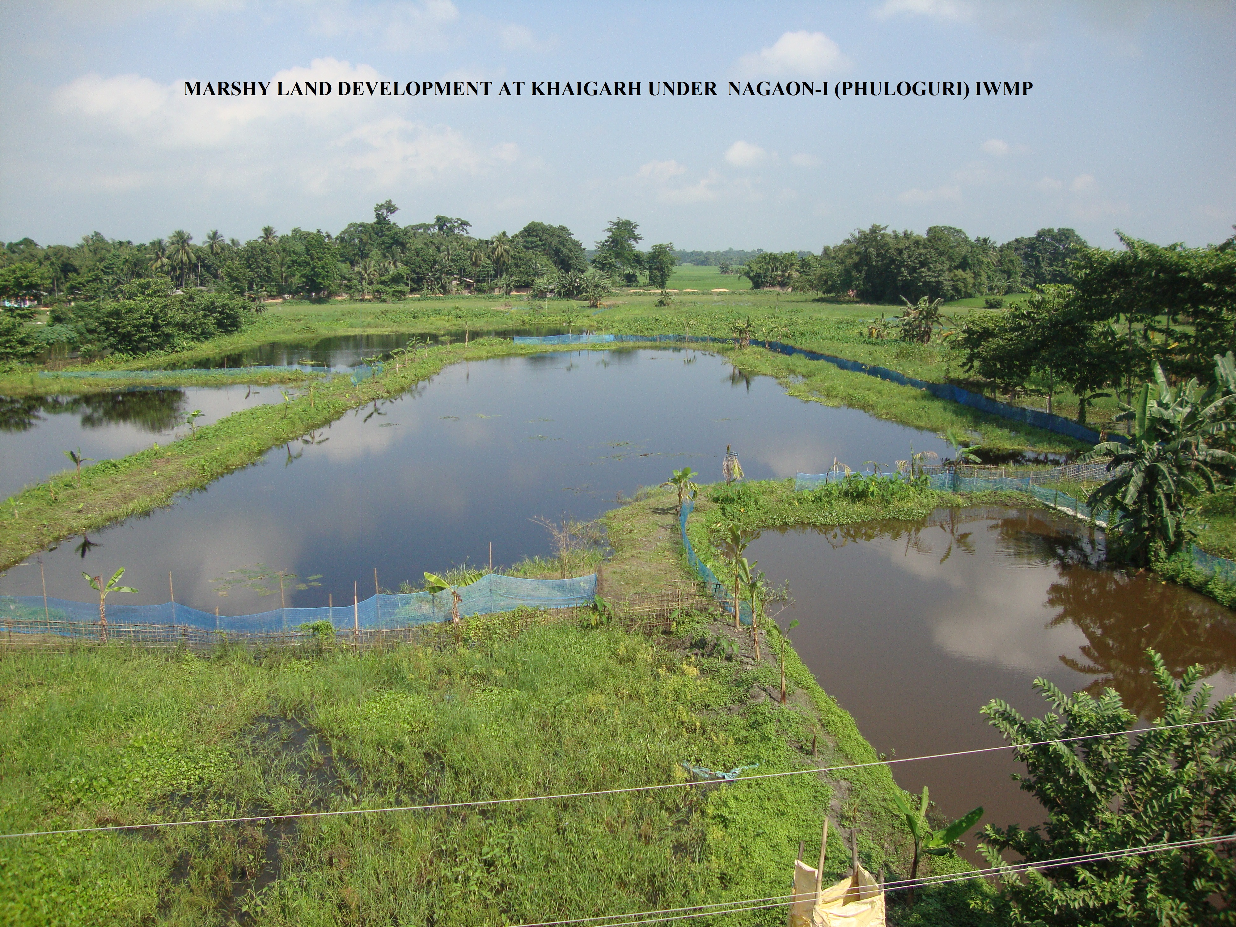 thesis on watershed management in india